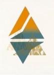 Triángulo con cacto cholla III